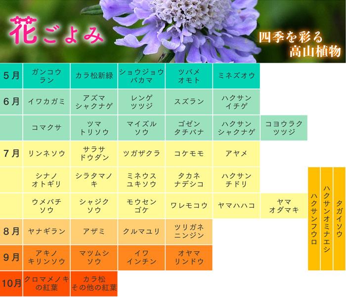 花ごよみ2021